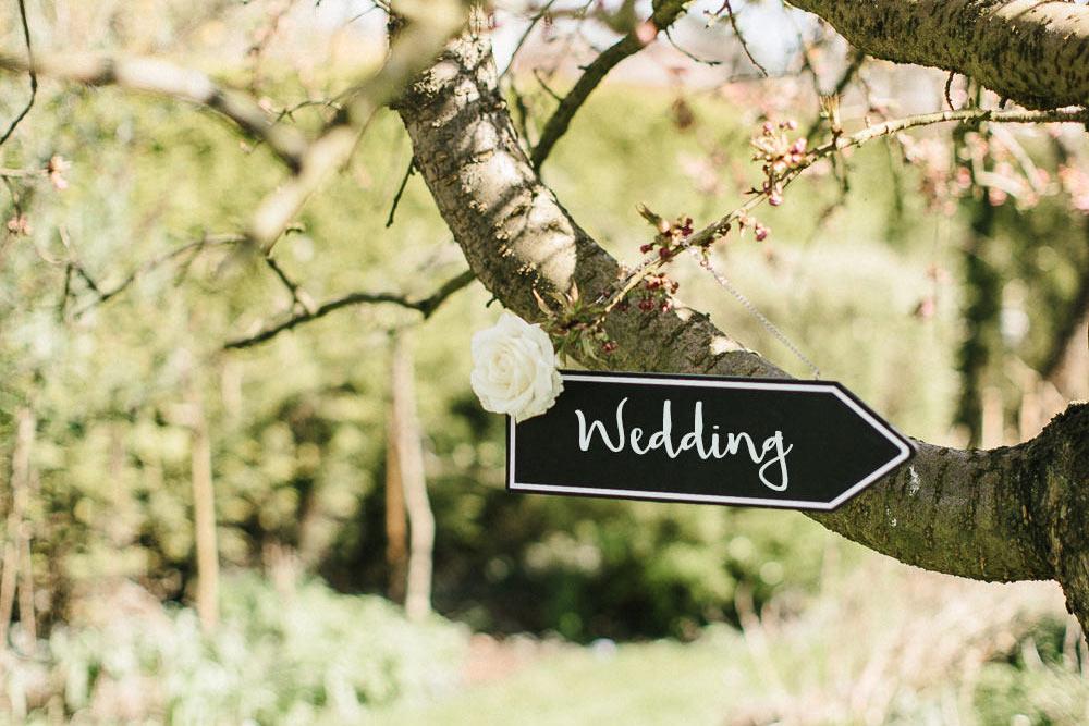 Wedding Arrow